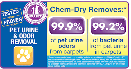 Chem-Dry's Pet Urine & Odor Removal Removes 99.9% of Pet Urine Odor