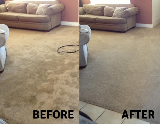 Chemfree Carpet Cleaning Reviews Carpet Vidalondon